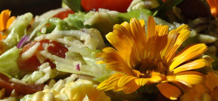 Die Verbindung von gesunder Ernährung und innerer Harmonie