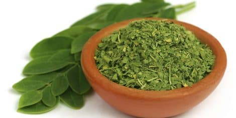 Green and dired moringa leaves