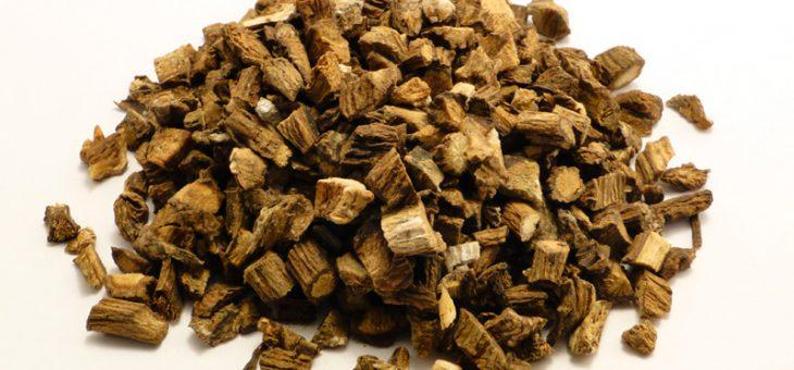 Essiac Tee – Heilmittel für Krebs, Depressionen,Asthma, Darm- ,Haut- und viele andere Erkrankungen