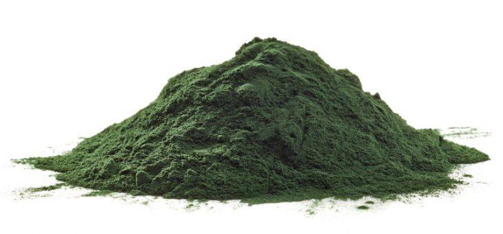 Spirulina – das nährstoffreichste Lebensmittel auf dem Planeten
