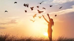 Vergebung – Freiheit durch loslassen